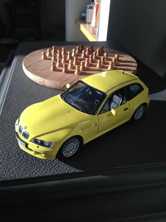 Sasha's Scale Coupe Collection (9)